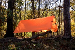 DD Tarp Orange 1